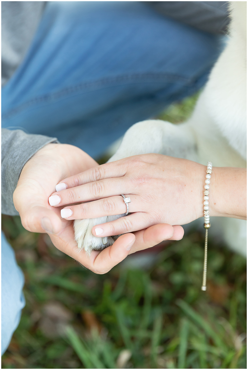hands and paw, engagement ring detail shot, ©Kayce Stork Photography | Biloxi, MS