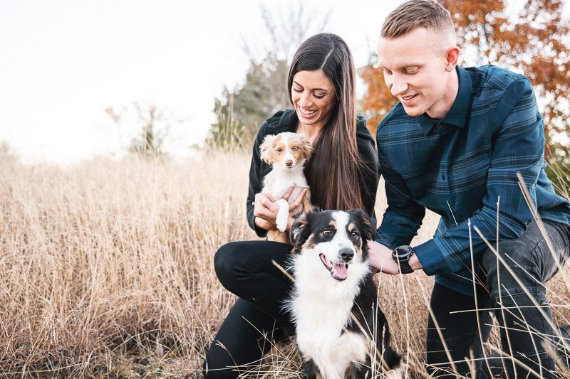 modern family portraits with mini Australian Shepherds, ©Monika Normand Photography | Dallas lifestyle dog-friendly family photography