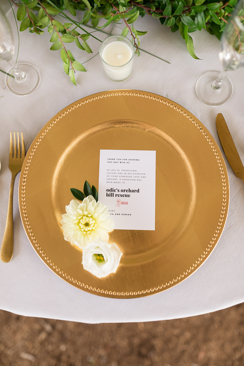 gold charger with donation favor, dog-friendly wedding ideas | ©Chris and Becca Photography, Simsbury, CT
