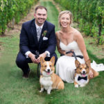Best (Wedding) Dogs: Newman and Barley The Corgis