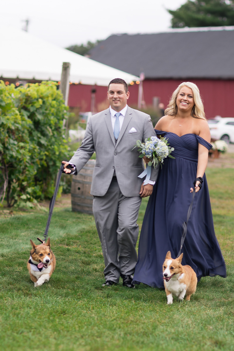 Best dog, best man, maid of honor, dog of honor, ©Chris and Becca Photography | dog-friendly wedding