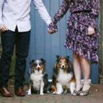 Engaging Tails: Piper and Oliver | Alexandria, VA