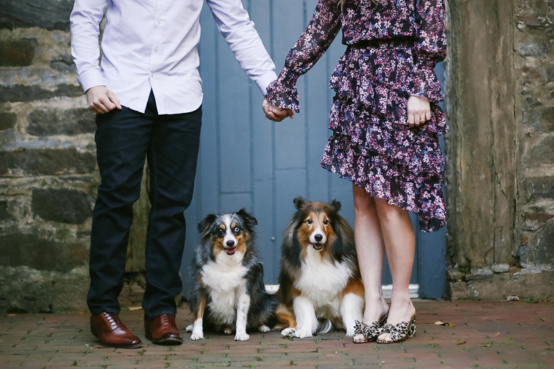 dog-friendly engagement session, Old Town Alexandria ©Helena Woods