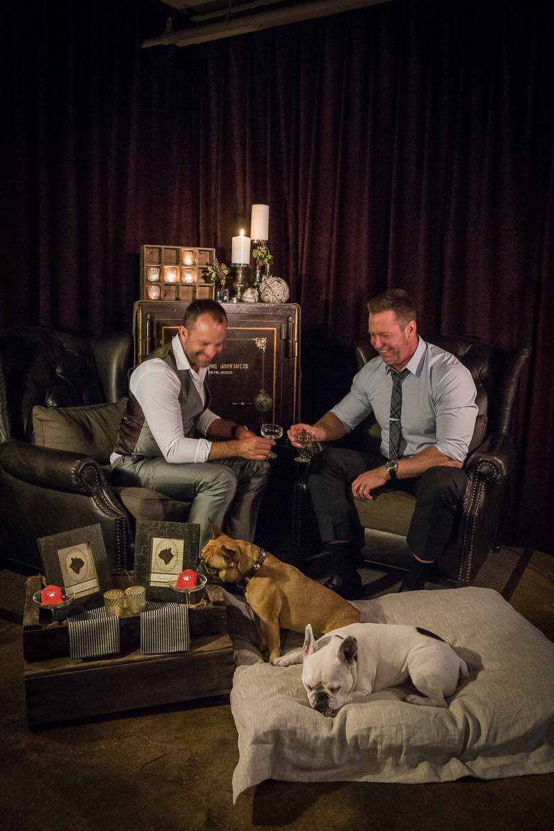 Just married couple and their dogs in hotel ©Robert Evans Studios | San Francisco wedding photography