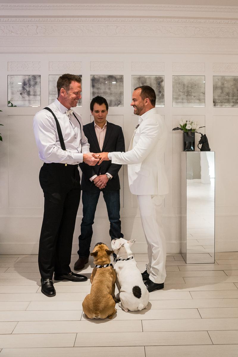 same sex wedding with French Bulldogs in attendance | ©Robert Evans Studios | San Francisco wedding photography
