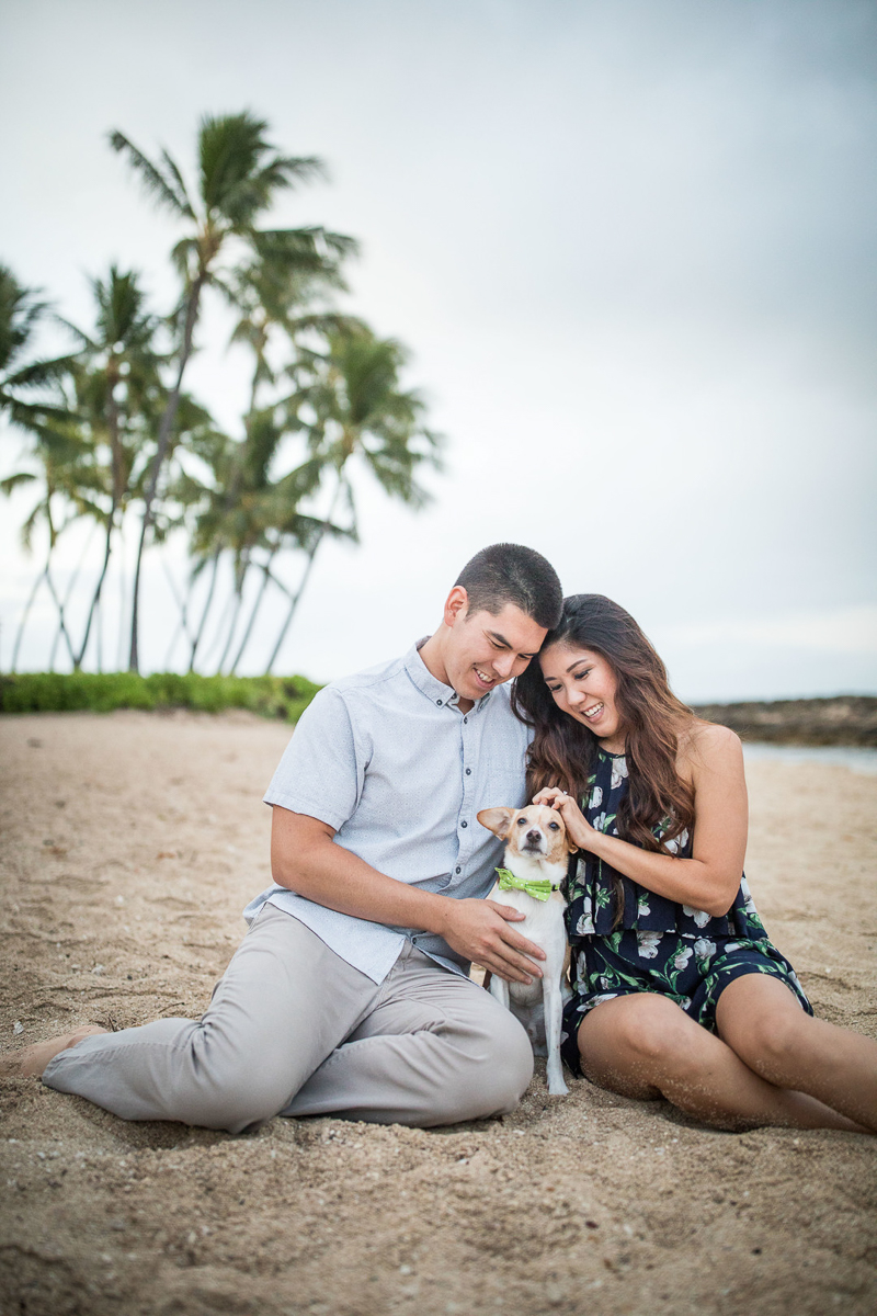 couple and dog on beach with palm trees in background in Hawaii, VIVIDfotos,