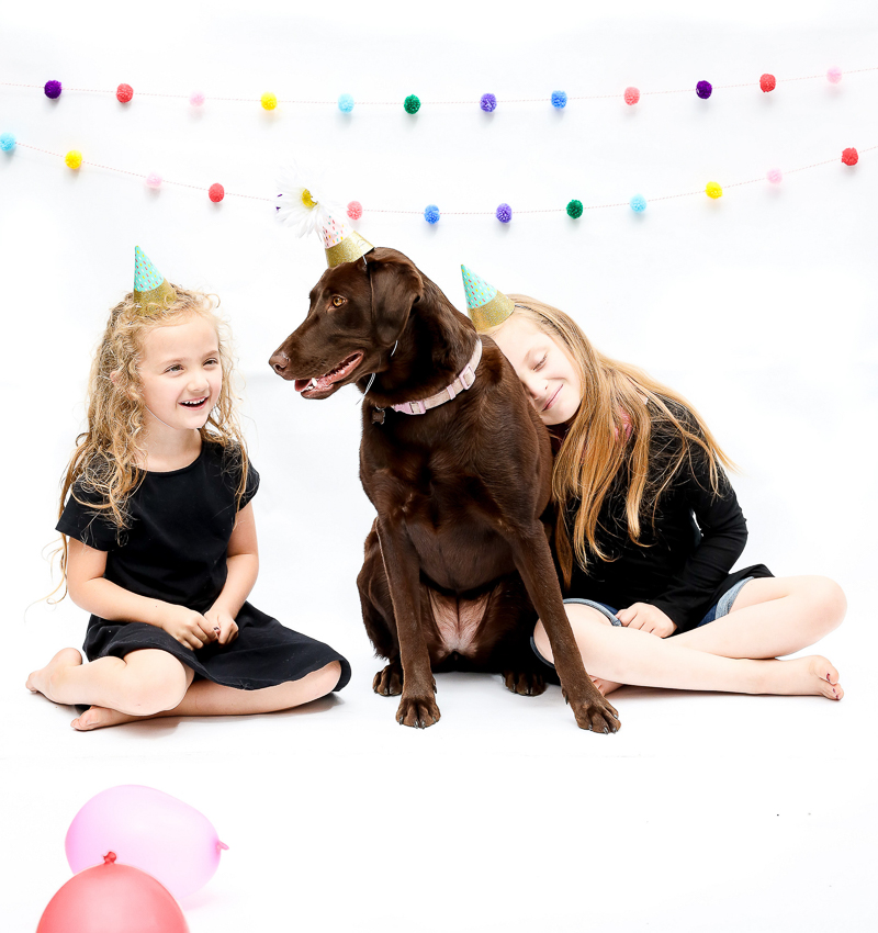 girl resting her head on Chocolate Lab, dogs and kids | ©designs HOBBY Photography | Medford, MA