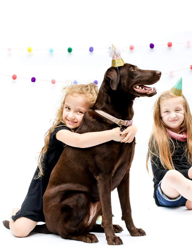 6 year old girl hugging her dog, dog party photoshoot | ©designs HOBBY Photography