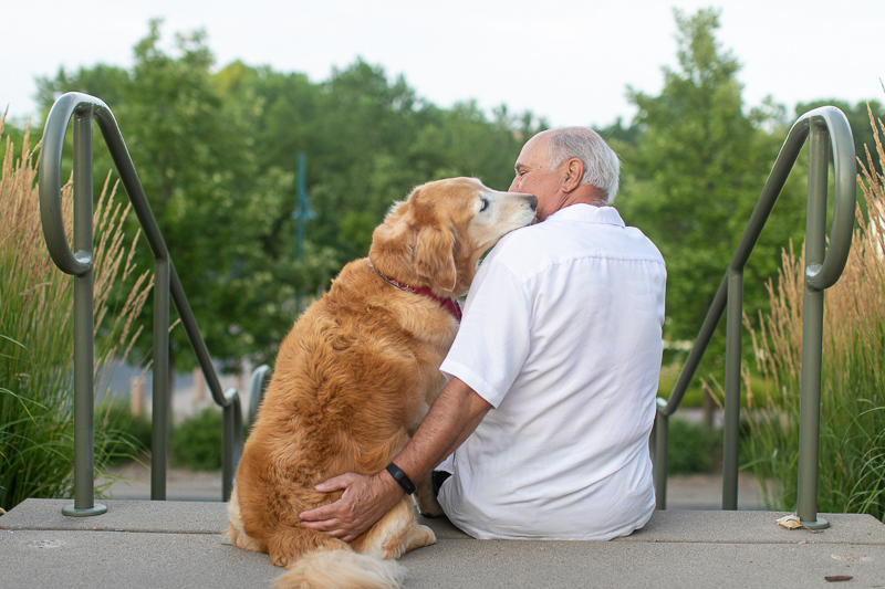 senior Golden Retriever licking man's face, love between humans and dogs ©K Schulz Photography, lifestyle pet portraits