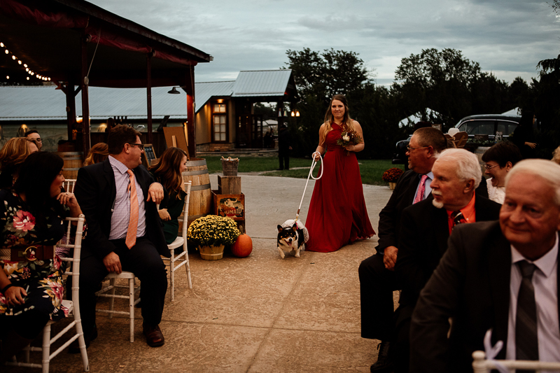 woman in long red dress walking down the aisle with a Corgi, dog-friendly wedding | © McKenzie Bigliazzi Photography