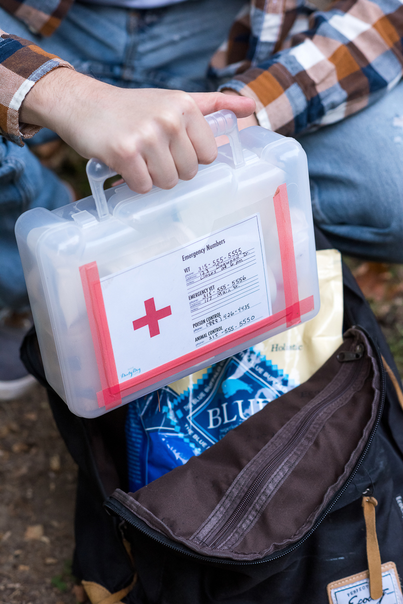 dog first aid kit | © Alice G Patterson Photography