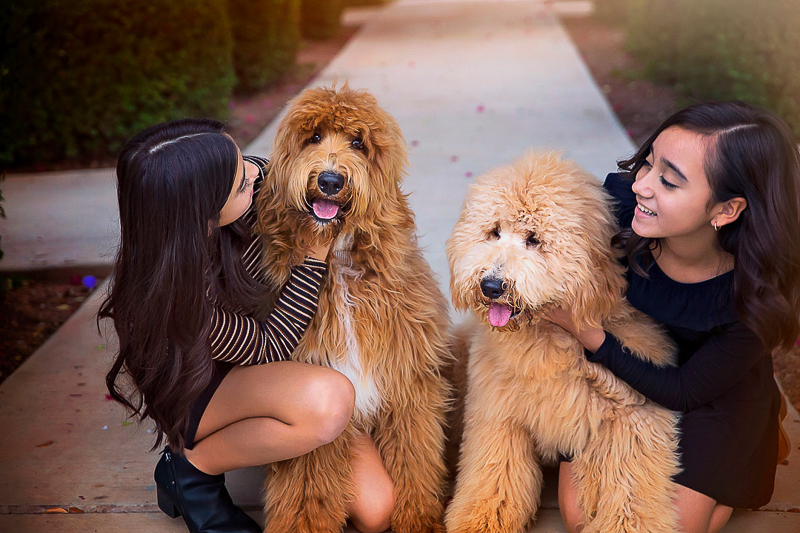 sisters and their Goldendoodles, ©Laura Gordillo Photography | dog-friendly family portraits