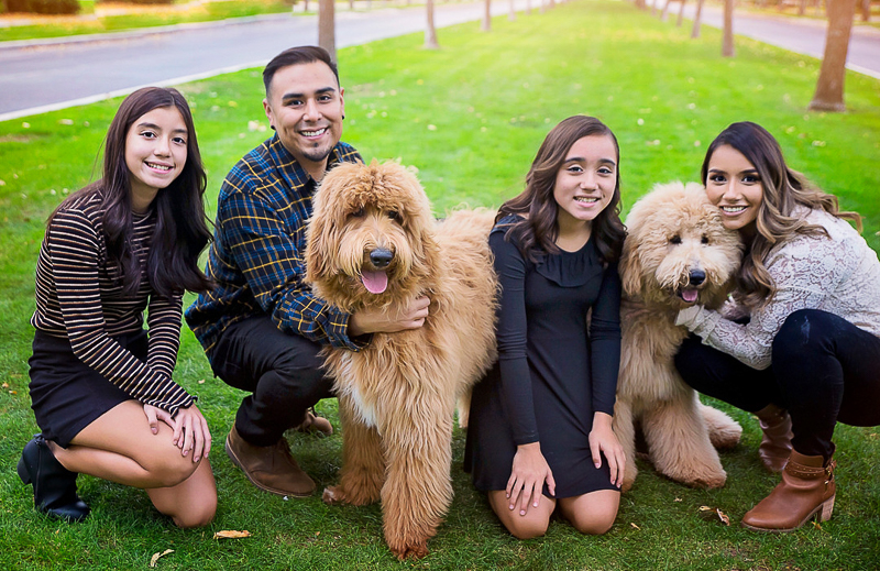 family portraits with two Goldendoodles, ©Laura Gordillo Photography, Phoenix, AZ