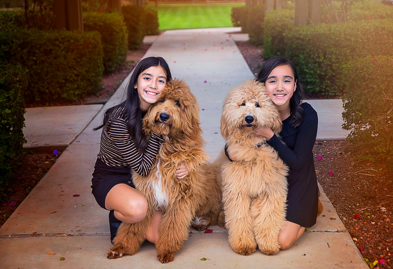 family photos with kids and dogs, ©Laura Gordillo Photography | people and their pets, Phoenix, AZ