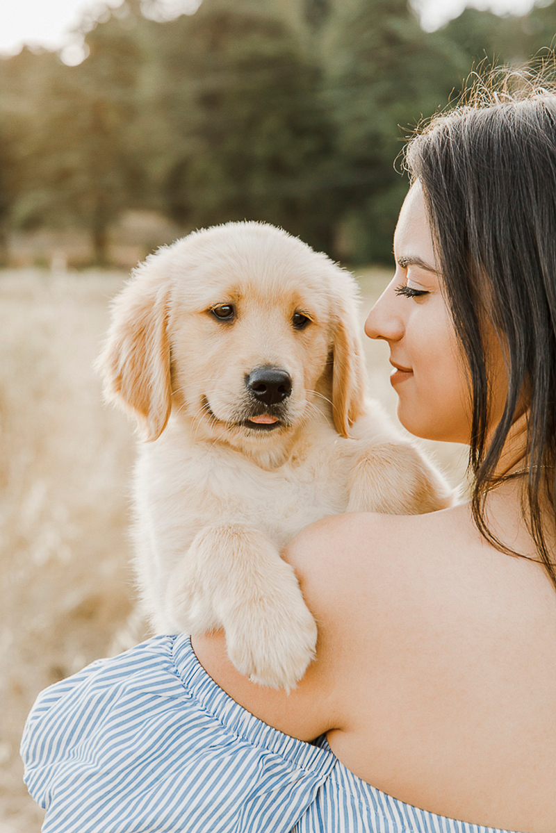 Northern California dog photography, dog-friendly engagement photography, ©Paulina Perrucci Photography, Gilroy, CA