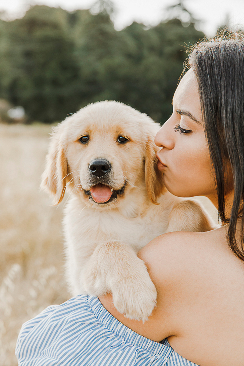 woman holding cute puppy in golden field, dog photography ideas | ©Paulina Perrucci Photography
