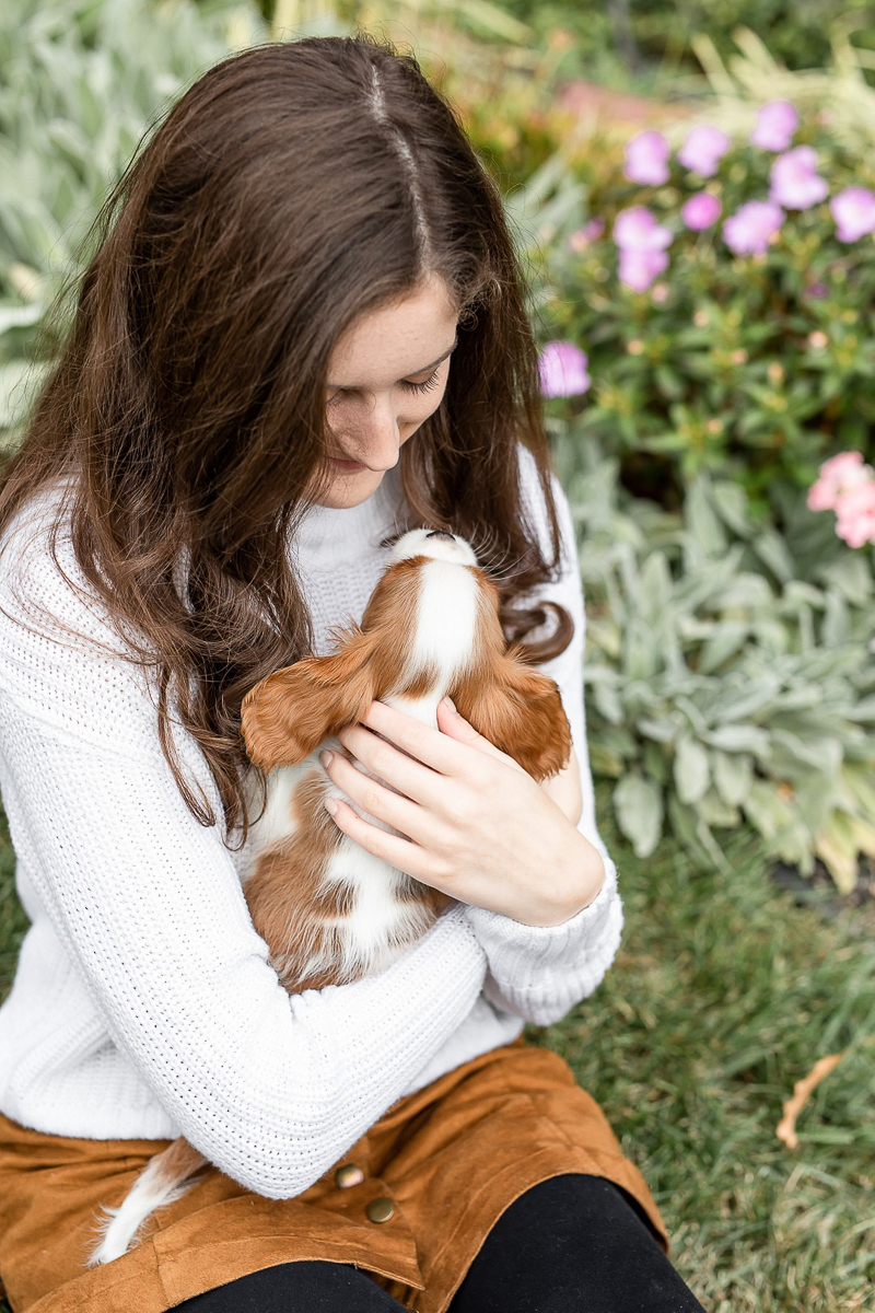 girl snuggling with puppy, Heather O'Steen Photography | pet photographer in the DC area