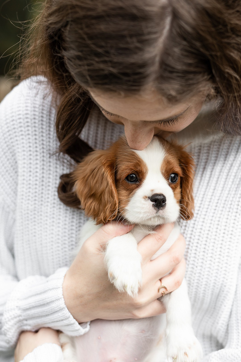 cute puppy cuddling with college student | Heather O'Steen Photography |