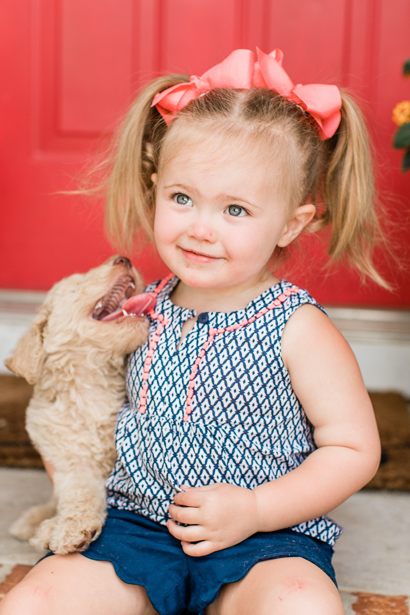 toddler and golden doodle puppy | ©Brandy Morrison Photography