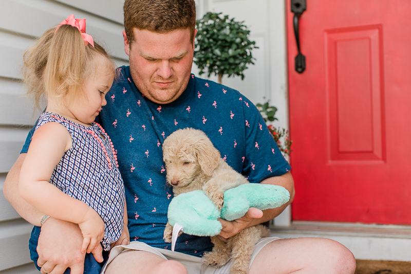man holding small puppy, toddler looking at puppy | ©Brandy Morrison Photography | dog-friendly family portraits