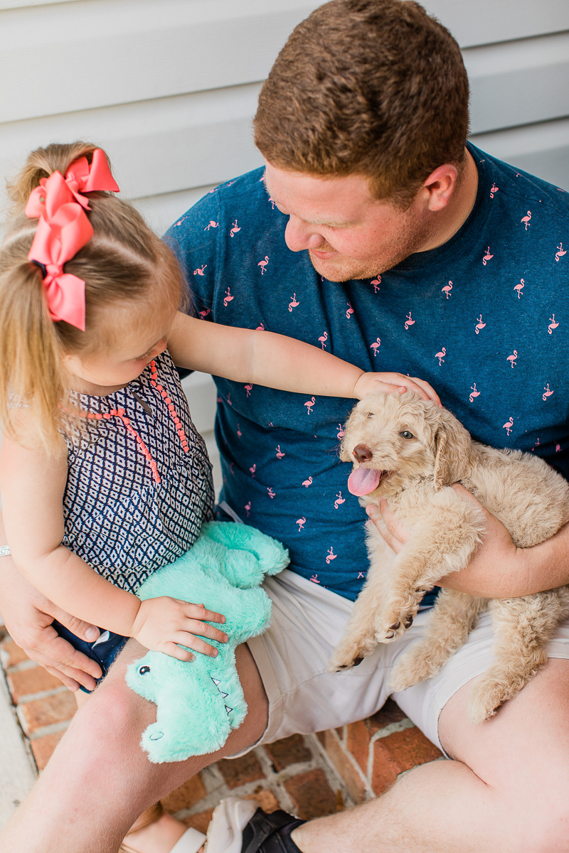 puppy love, toddler petting a puppy | ©Brandy Morrison Photography | dog-friendly family portraits