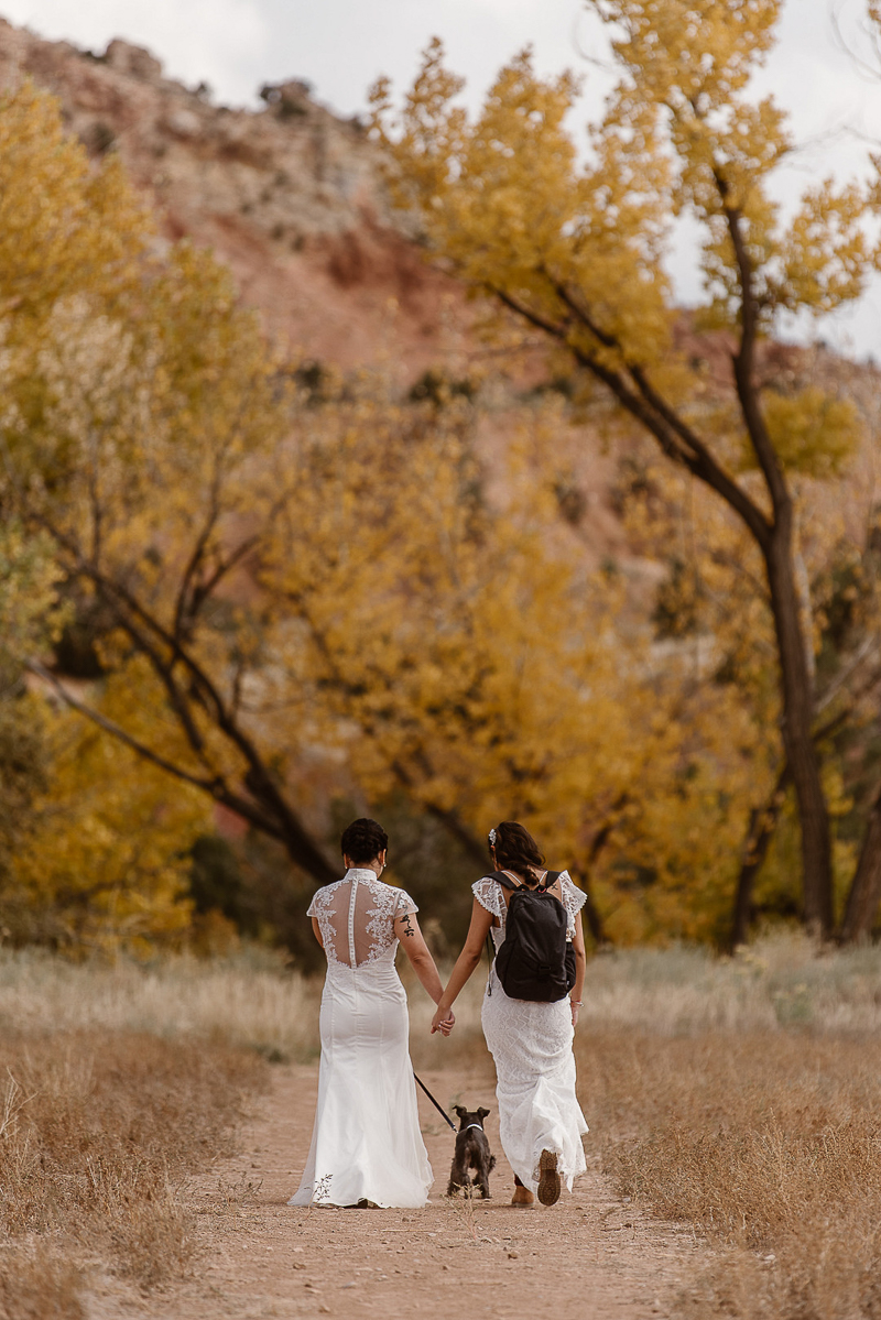 brides and their dog hiking on trail, elopement ideas | © Adventure Instead dog-friendly elopement photography