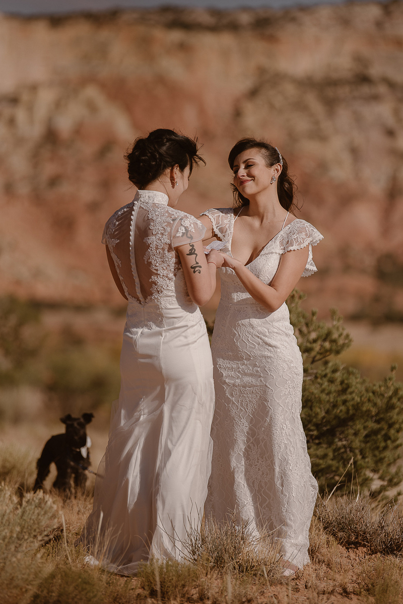 dog-friendly elopement with Schnauzer, © Adventure Instead dog-friendly elopement photography, Abiquiú, NM