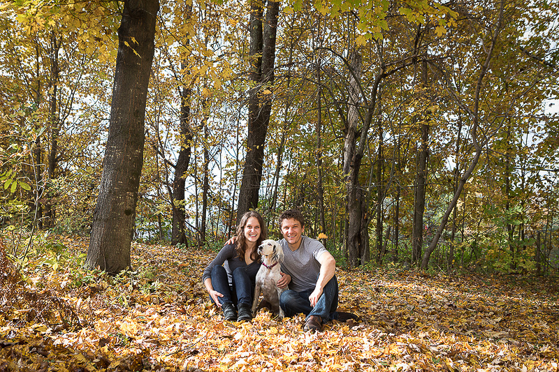 fall engagement photos with Llewellin Setter | ©Cat Cutillo Photography | Vermont engagement and wedding photographer