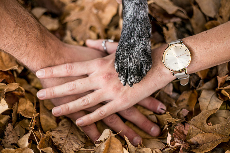 hands and paw, engagement photos with a dog | ©K Schulz Photography