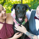 7 Tips For Having Your Dog At Your Engagement Session