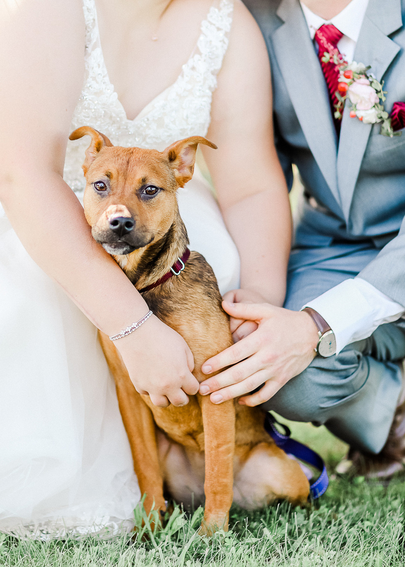dog-friendly wedding, Ava, Missouri. ©Shelby Chante' Photography