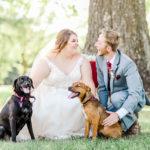 Best (Wedding) Dogs:  Franny and Ruby | Ava, Missouri