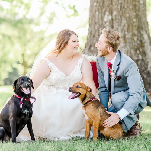 Best (Wedding) Dogs:  Franny and Ruby | Ava, Missouri