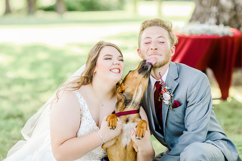 cute Boxer/Lab mix licking groom's face, happy wedding photos dog-friendly wedding, Ava, Missouri | ©Shelby Chante' Photography