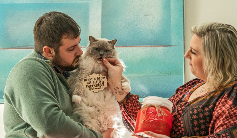 "cat wearing ""mommy and daddy are getting meowed sign"" , engagement session with cats, Nada Khalaf-Jones-Skyborn Visual Studios, Raleigh, NC"