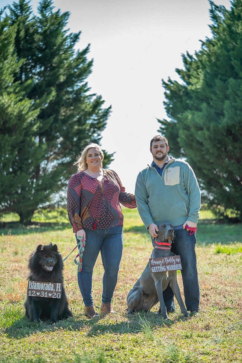 dog-friendly engagement session with Chow and Great Dane Nada Khalaf-Jones-Skyborn Visual Studios