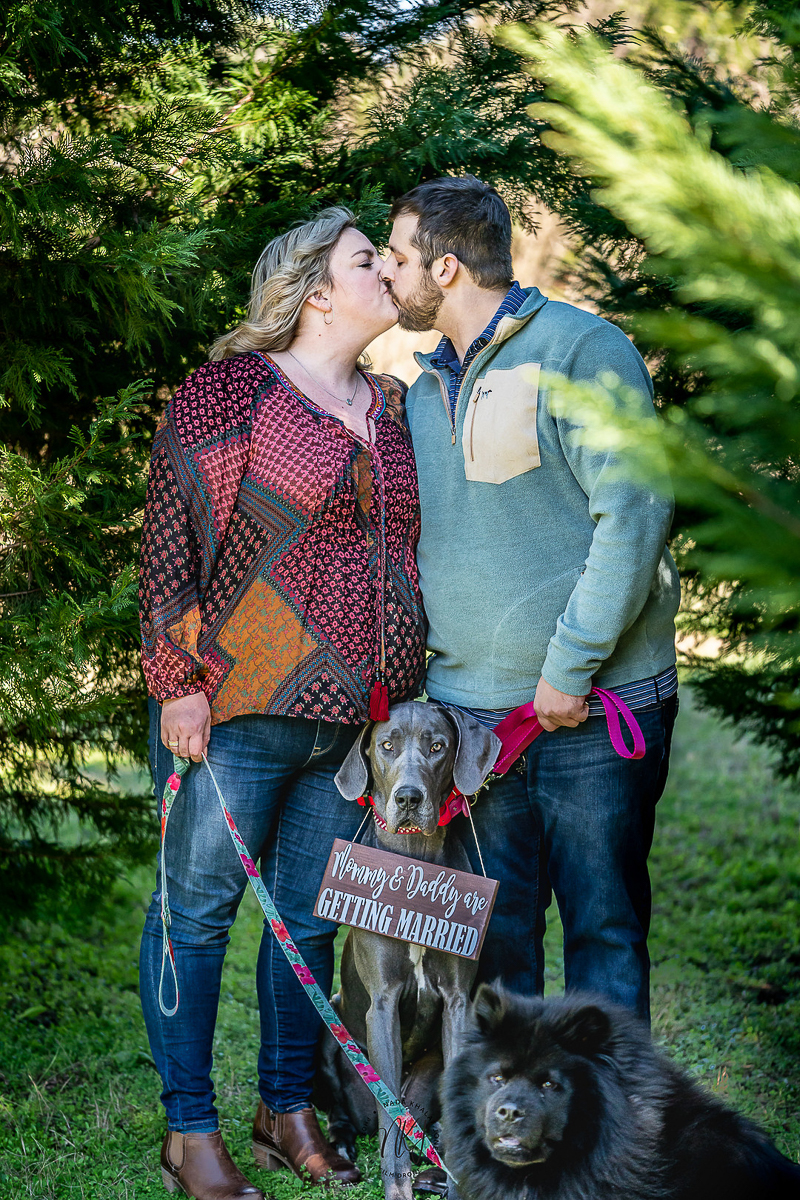 engagement photos with Chow and Great Dane | Nada Khalaf-Jones, Raleigh, NC