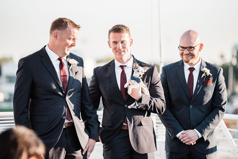 groom, best man, usher and wedding dog, including dogs in a wedding, ©I Got Shot By Lisa Marie Photography