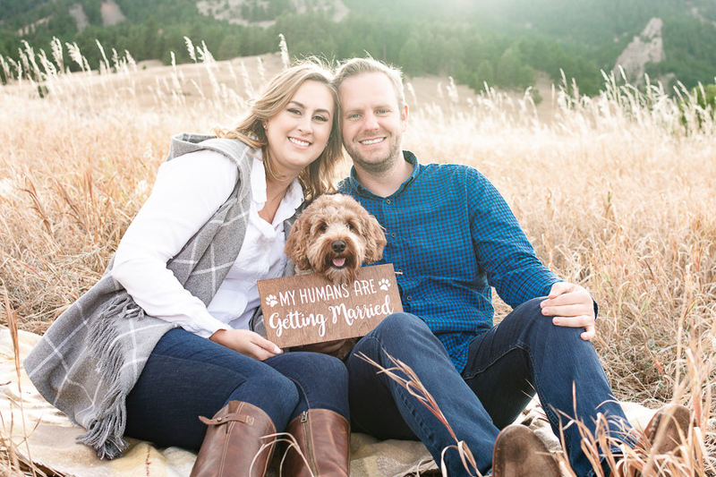 dog wearing my humans are getting married sign, dog-friendly engagement photo ideas | ©Nicole Andre Photography