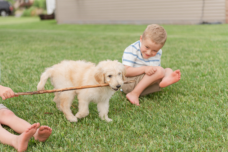 dog-friendly family photo ideas, puppy and kids | ©Samantha Rule Photography | dog-friendly family portraits, Sartell, MN