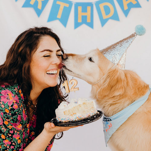 Dog Party:  Lucky The Golden Retriever's 12th Birthday