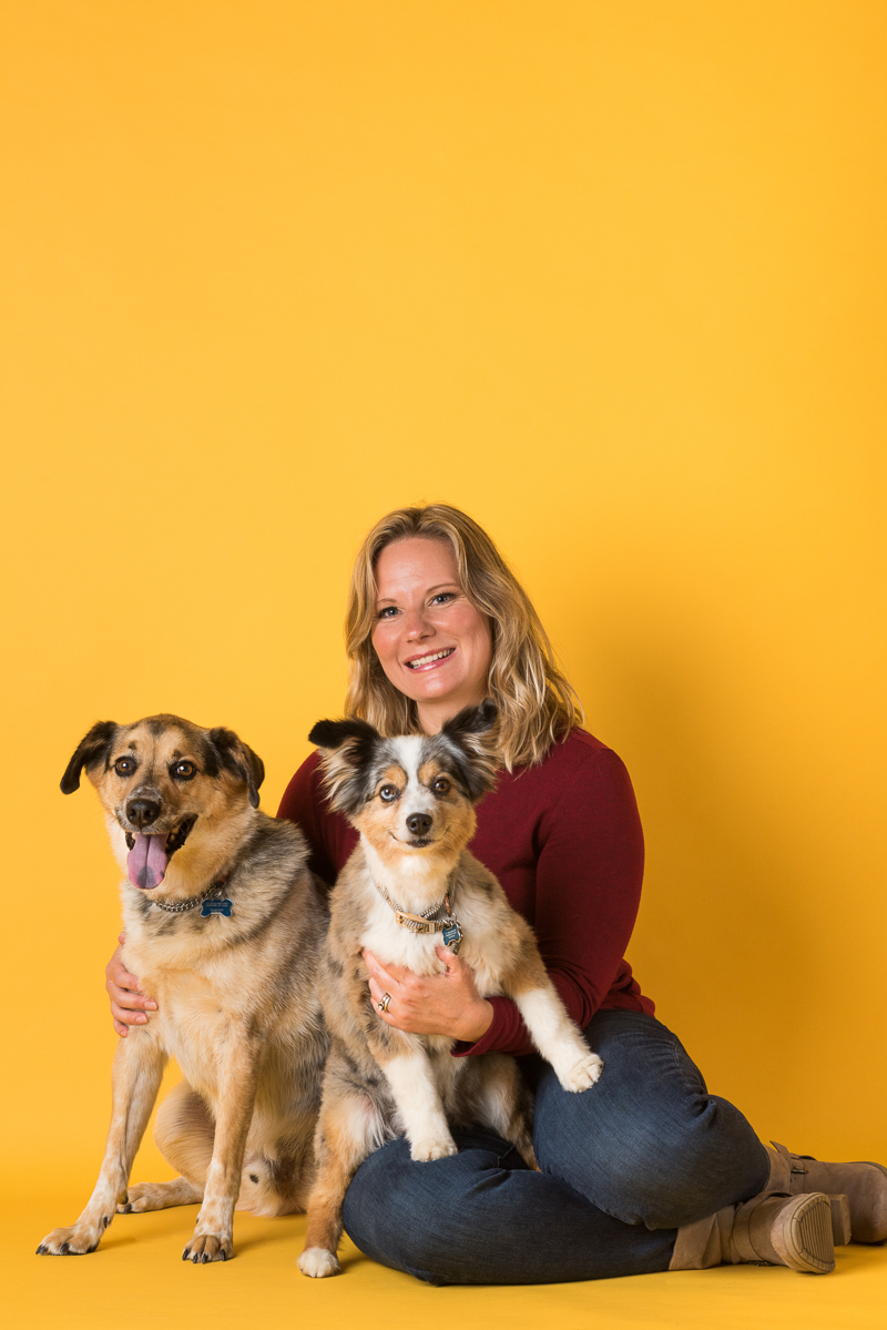 woman with her senior dogs, studio dog portrait ideas, yellow background | Alice G Patterson Photography