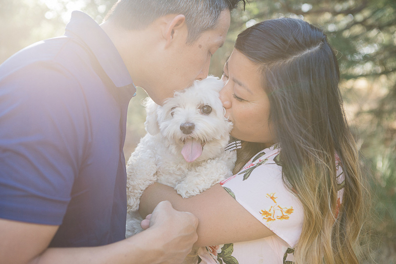 couple kissing their Maltese-Poodle mix, | ©Stephanie Fong Photography