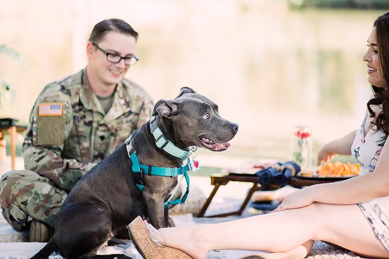 dog-friendly engagement picnic | ©Fig + Willow Studios, Las Vegas, NV