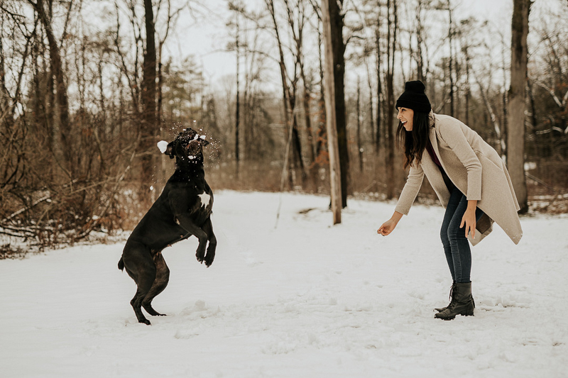 large dog catching a snowball, dog photography ideas | ©Tomo.photography