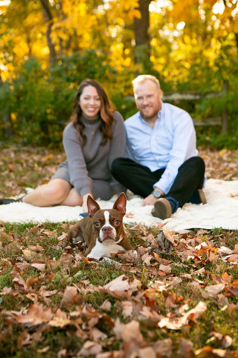 dog-friendly family portrait ideas, couple sitting on blanket, ©Mandy Whitley Photography