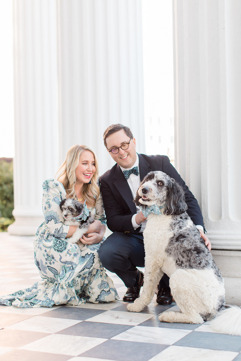 dogs wearing fancy collars, man wearing suit, woman in gorgeous dress, family photos with dogs | ©Christa Rene Photography