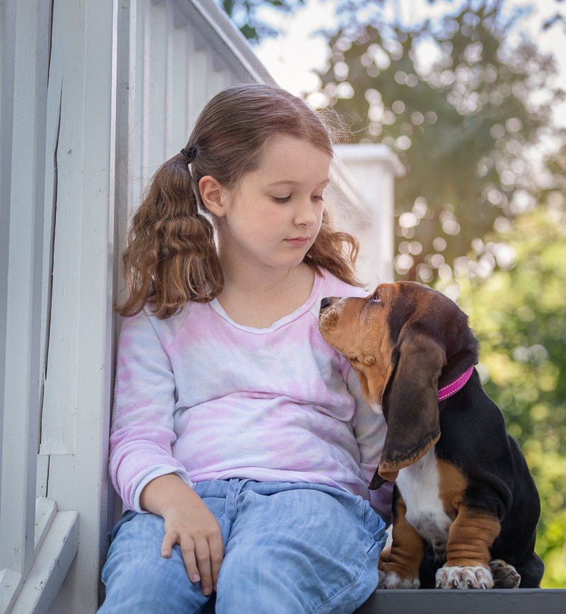 bond between girl and her puppy, Bassett Hound puppy wearing pink collar | ©Terri J Photography