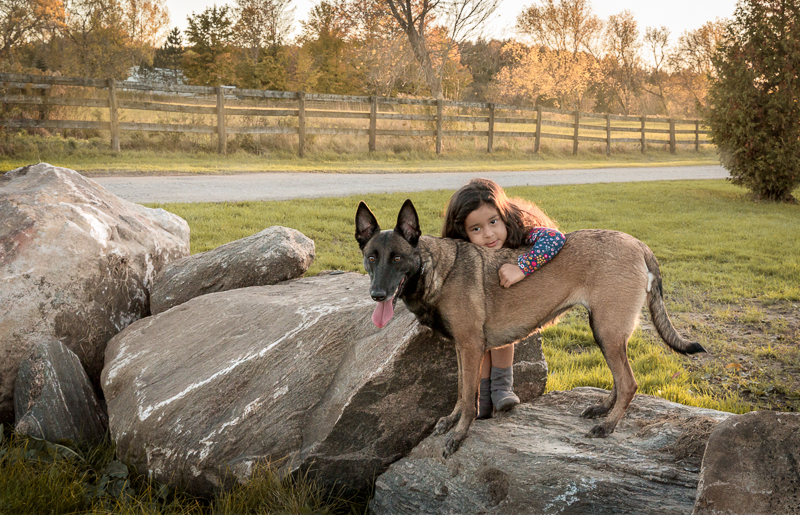 dog standing on rock while child hugs him, ©Terri J Photography
