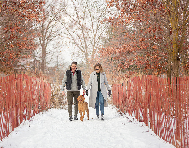 couple walking their dog on trail with snow fence on either side, snowy dog photography ideas | ©Terri J Photography, Toronto, Ontario